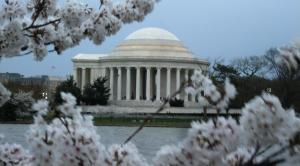 Jefferson Monument with flowers