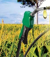 Biofuels in Asia April 28-29 Bangkok, Thailand