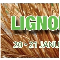 CALL FOR SPEAKERS:  Lignofuels 2016 Summit — January 20-21 — Munich, Germany   DEADLINE: unclear