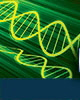 Next Generation Bio-Based Chemicals Summit    January 28-31, 2013   San Diego, CA