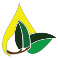 Collective Biodiesel Conference   August 14-17, 2014   Pittsboro, NC