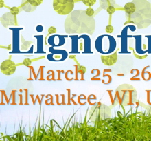 ACI's Annual Lignofuels Americas Summit   March 25-26, 2015    Milwaukee, WI
