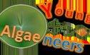 Young Algaeneers Symposium    June 14-16, 2012    Wageningen, The Netherlands