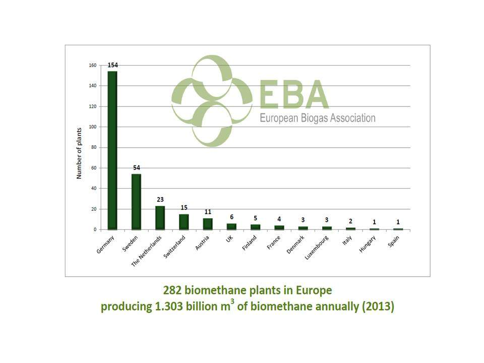 Figure 3. Number of biomethane plants according to the country.