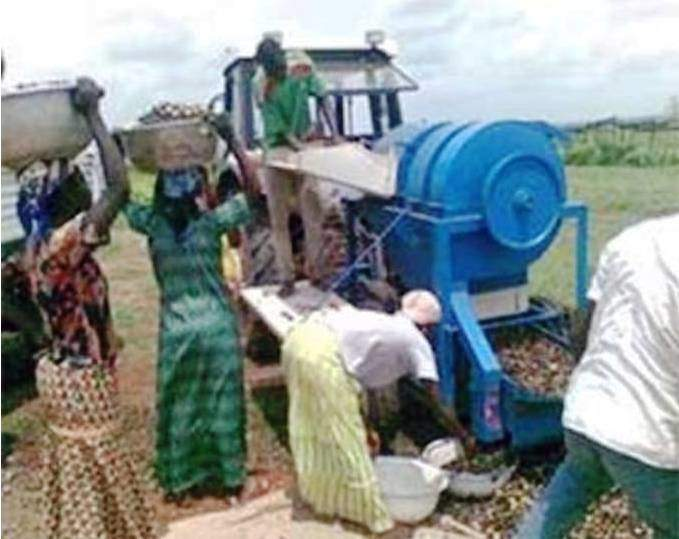Women in Ghana processing shea butter using jatropha oil-powered multipurpose unit.