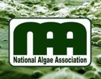 CALL FOR PRESENTATIONS:  Algae Bloom Remediation Workshop — May 21-22, 2019 — Ft. Lauderdale, FL    DEADLINE: February 28, 2019