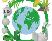 Biofuels – Challenges and Perspectives for Brazil and United States   —   February 26, 2019   —   Houston, TX