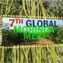 Global Moringa Meet 2019   —   November 23-25, 2019   —  Jaipur, India