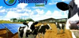 California Dairy Sustainability Summit   —   November 5-6, 2020   —   Sacramento, CA