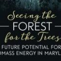 Biomass Energy Webinar Series   —   June 16 and 23 and July 7, 2020