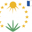 EUBCE 2021 & e-EUBCE 2021 — 29th European Biomass Conference & Exhibition   —   April 26-29, 2021   —   ONLINE and Marseille, France