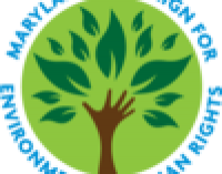 WEBINAR:  The Efficacy of Select Environmental Justice Laws and State Environmental Constitutional Amendments   —   November 6, 2020